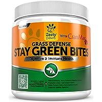 Amazon Best Sellers: Best Dog Probiotic Supplements