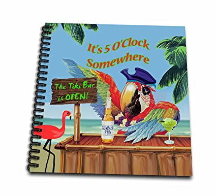 amazon com 3drose db 18918 1 pirate parrot in paradise drawing book