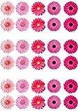 Top That - Topper per torte a forma di gerbera, in carta di ostia, colore: Rosa misti (Confezione da 30)