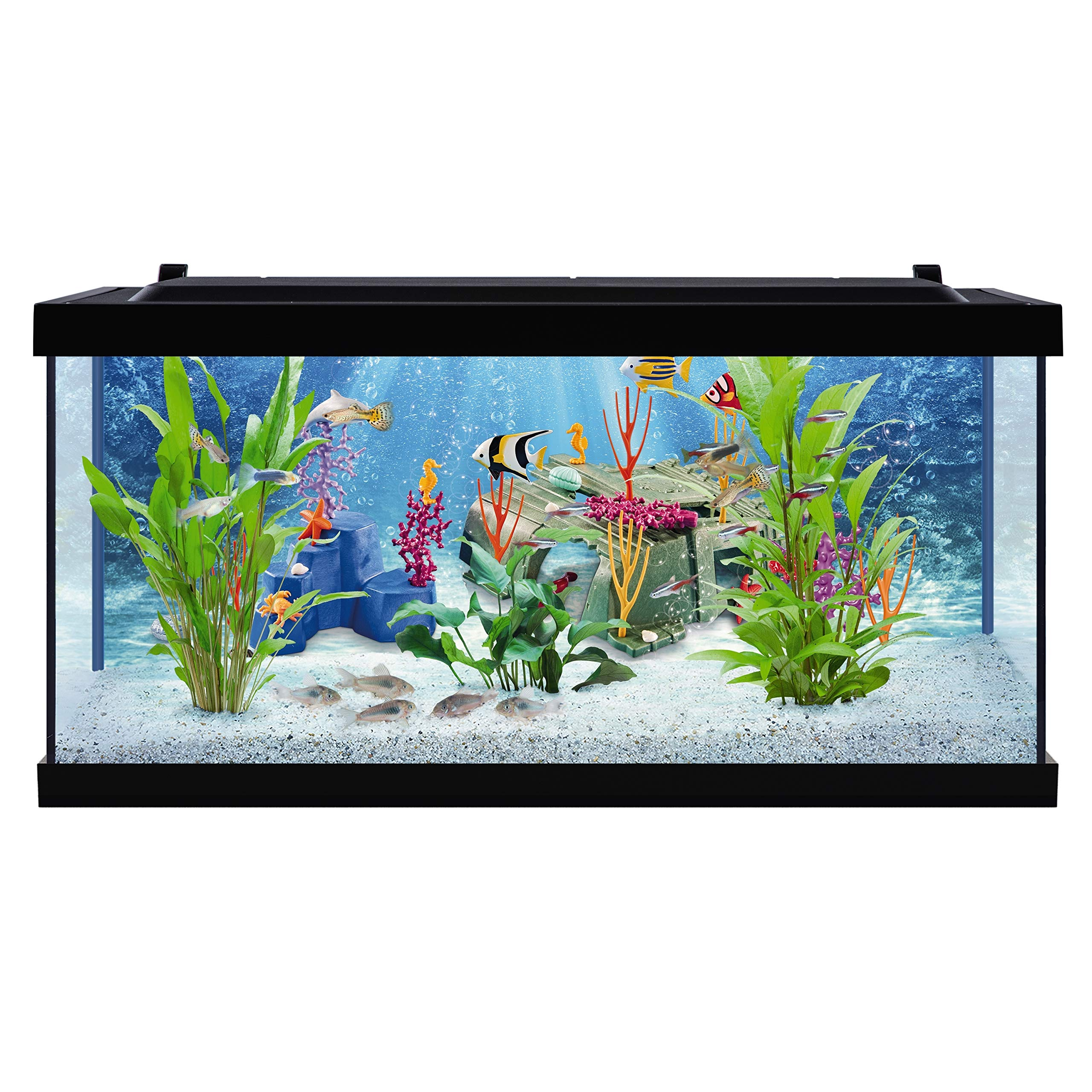 Tetra PLAYMOBIL Explore Your Aquarium 10 Gallon Kit by Tetra