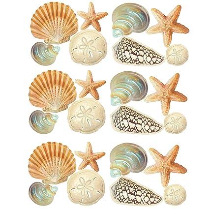 Beau Wallies Wall Decals, Seashore Shells Wall Stickers, Set Of 24