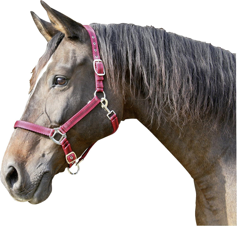 Kerbl Mustang Head Collar