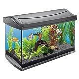 Tetra AquaArt Discovery Line Aquarium