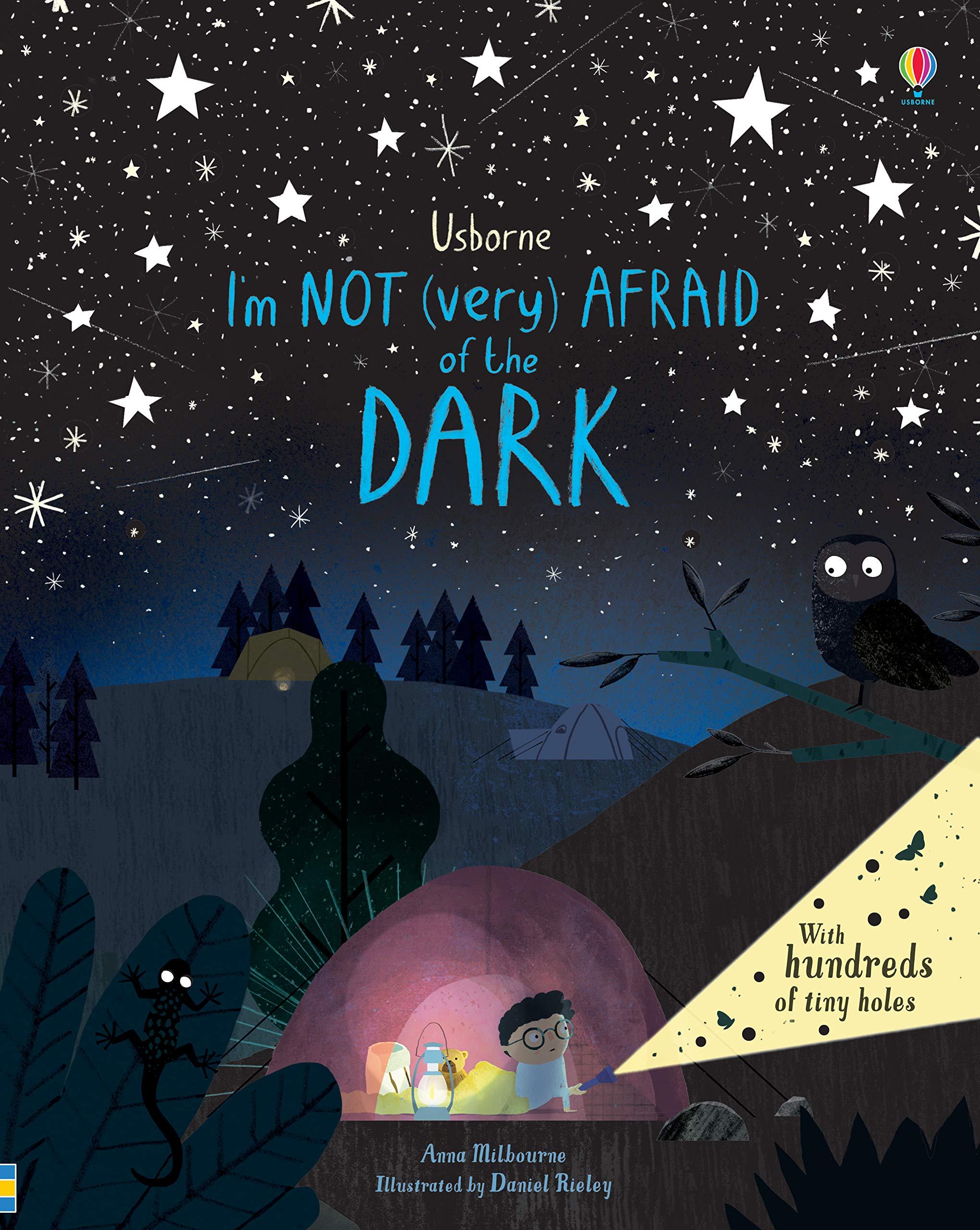I'm Not (Very) Afraid of the Dark: Amazon.co.uk: Anna Milbourne, Daniel  Rieley, Daniel Rieley: 9781474940726: Books