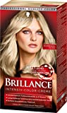 Brillance Intensiv-Color-Creme 811 Scandinavia Blond Stufe 3, 3er Pack (3 x 143 ml)