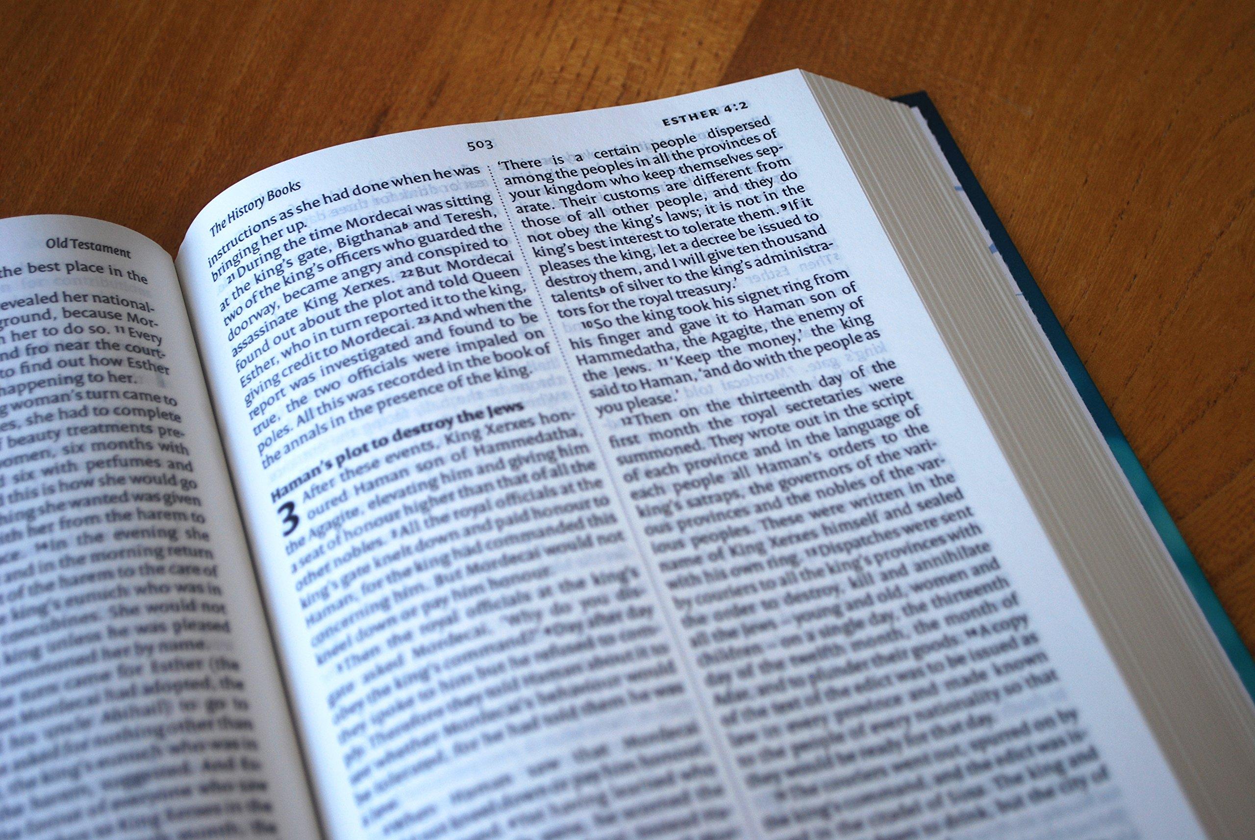 Image result for niv bible