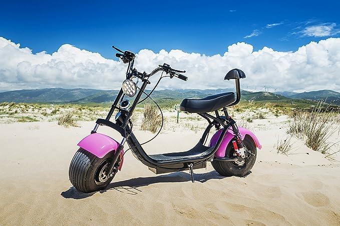 Citycoco Scooter Moto Eléctrica Harley 1000W Bluetooth Biplaza 25-35km/h (Naranja): Amazon.es: Deportes y aire libre