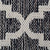 DII CAMZ10420 Indoor Flatweave Cotton Handloomed
