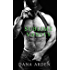 Sublime Vanity (Southern Chaotic's MC Book 5)
