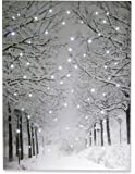 "Snowy Winter Path Light Up Poster by Clever Creations | Sparkling Canvas Wall Art with Bright LED Lighting | 15.75"" x 11.75"" Perfect Size for Home, Living Room, Office or Classroom 