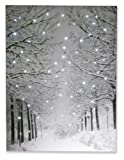 """Amazon Price History for:Snowy Winter Path Light Up Poster by Clever Creations 