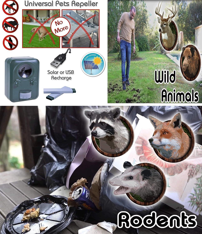 roux Solaire dext/érieur Avec haut-parleur chiens INTEY R/épulsif pour animaux R/épulsif contre les martres et flash nuisibles Ultrasons /Étanche Pour chats