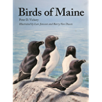 Birds of Maine