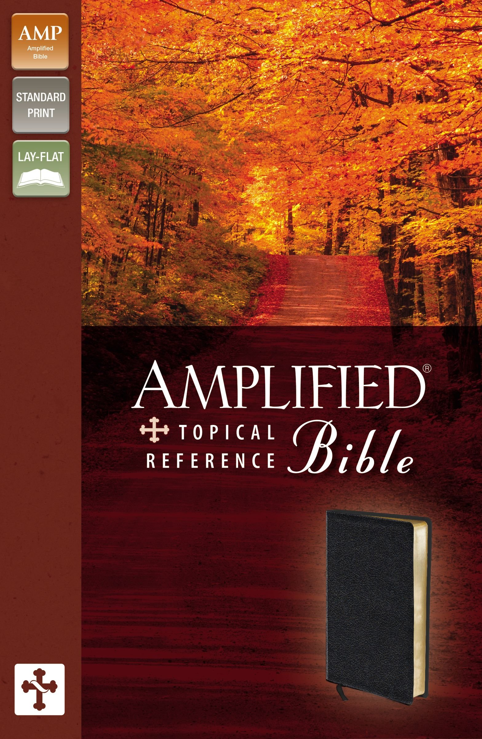 Download Amplified Topical Reference Bible pdf epub