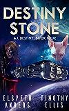 Destiny Stone (A.I. Destiny Book 4)