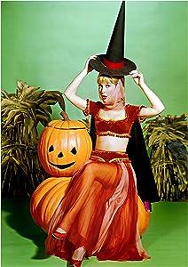Eddy's Entertainment Barbara Eden I Dream of Jeannie Color 8x10 Silver Halide Archival Quality Reproduction Photo Print