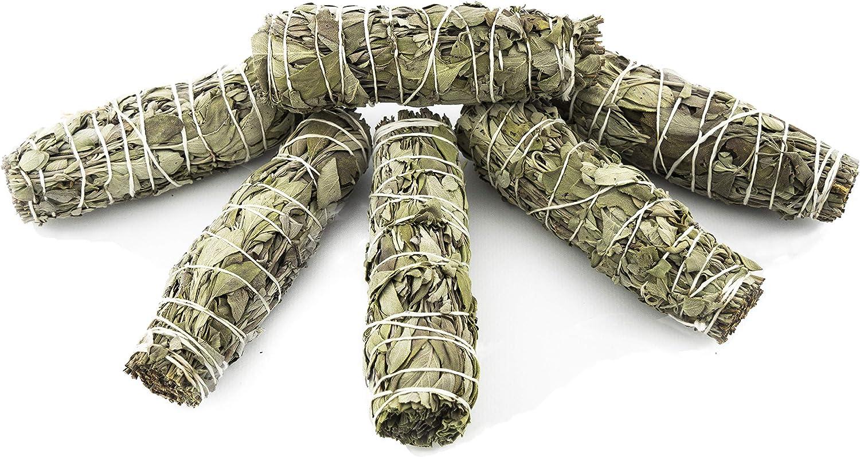 6 Palitos de salvia blanca, fragante hierba de limpieza, purificadora, aromaterapia con energía positiva, para el alivio del estrés, para yoga, meditación | Paquete de 6 palos pequeños 10-12 cm