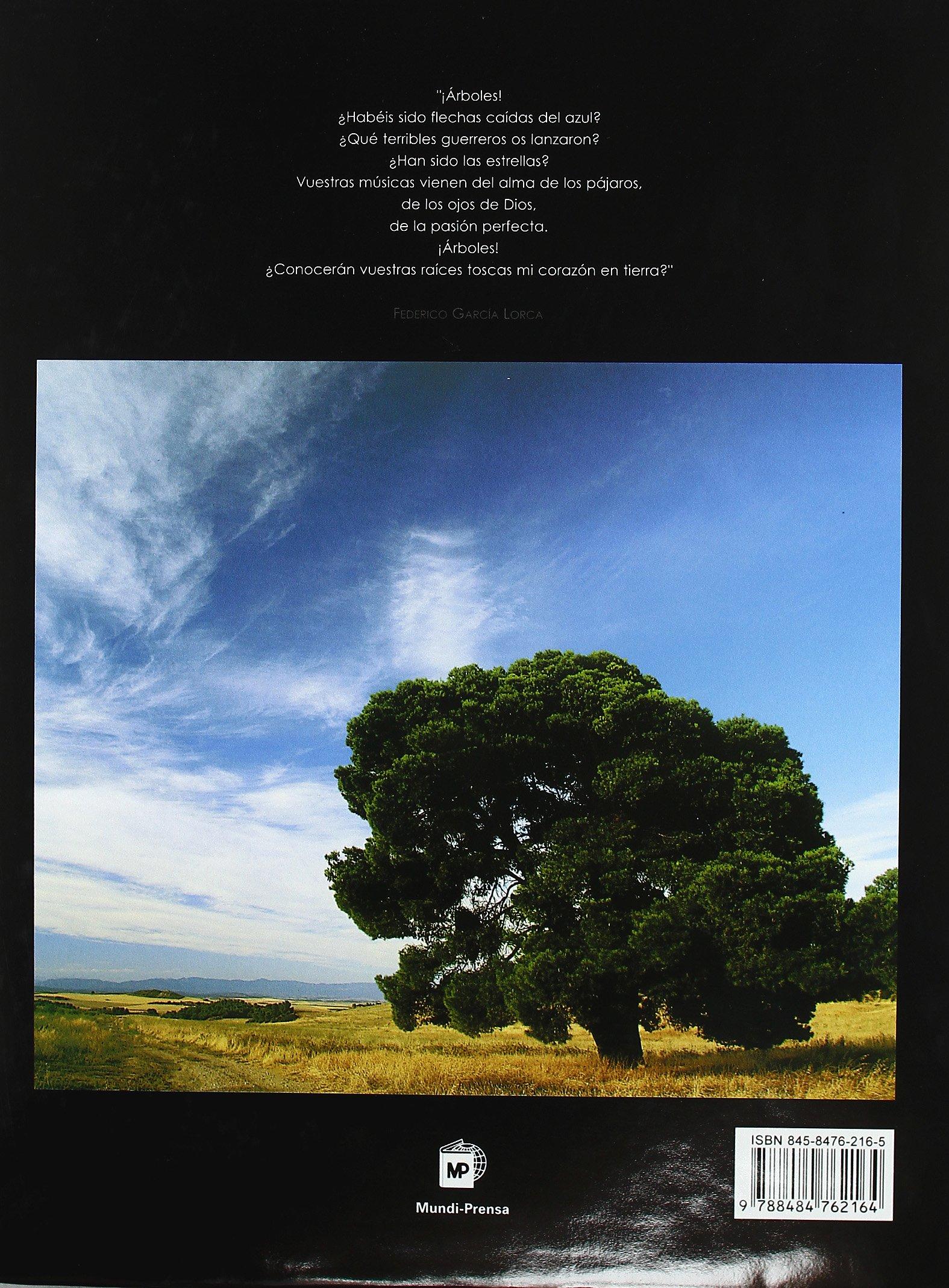 Árboles singulares de España: Amazon.es: Global Edition and Contents: Libros