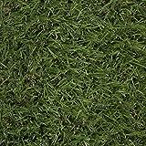 Ottomanson Garden Collection Solid Grass Design