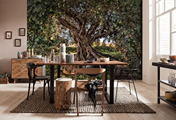 Wandbild Olivenbaum Dekoration Wandbelag 368 x 254 cm Bl/ätter Fototapete OLIVE TREE Wand 8-531 Baum Wanddeko Tapete Natur Komar