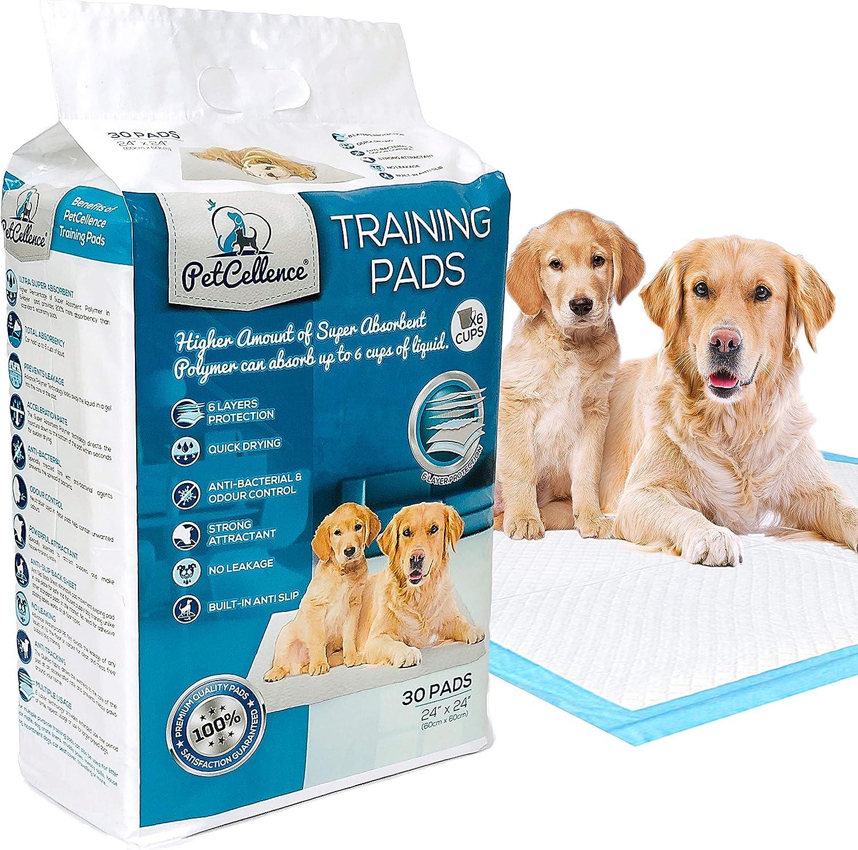 PetCellence Empapadores para Perros - Paquete de 30 Almohadillas Toallitas de Entrenamiento para Mascotas, Alfombrilla para Comedero y Bandeja de Adiestramiento para Cachorros - Grande 60 cm x 60 cm