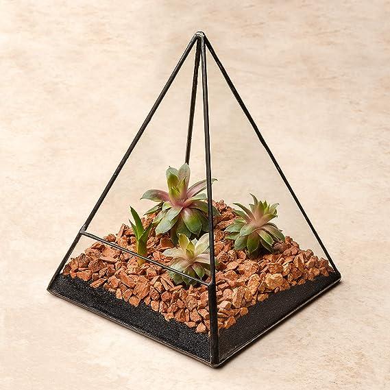 Ultra 14x14x19 Triangular Vidrio Claro Terrario Plantador Forma Geométrica Perfecta Para La Exhibición De Mesas De Boda De La Pieza Central única o Ventanas ...
