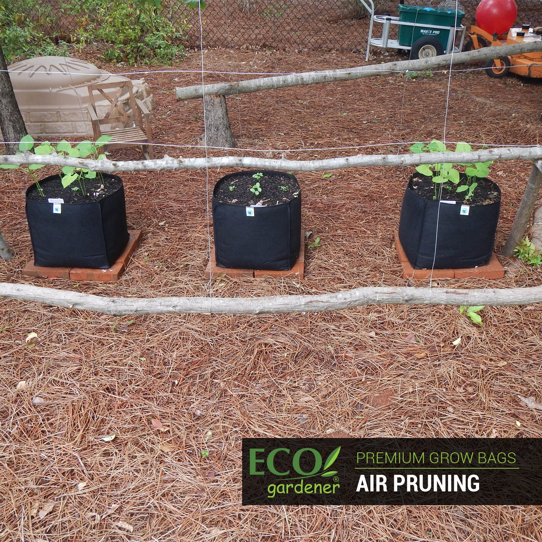 Amazon.com : ECOgardener Grow Bags 5 Gallon - 5Pk. Premium Quality ...