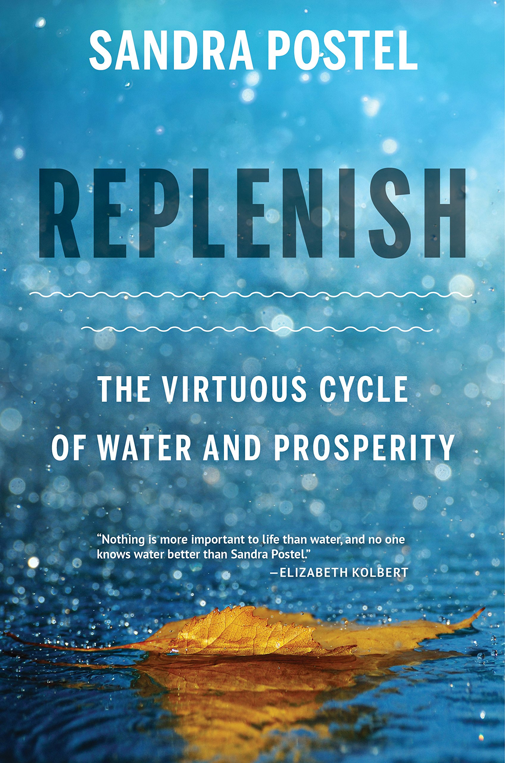 Replenish Virtuous Cycle Water Prosperity product image