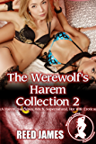 The Werewolf's Harem Collection 2: (A Harem, Succubus, Witch, Supernatural, Hot Wife Erotica)
