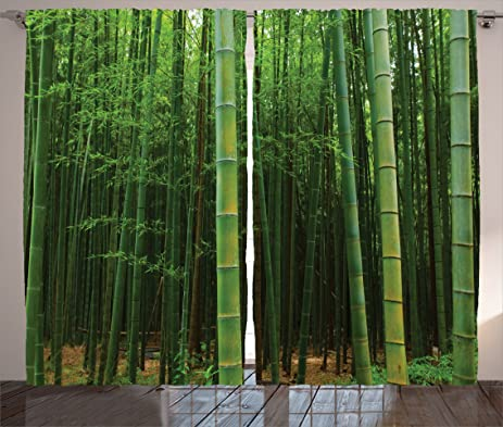 Jungle Curtains Bamboo Decor By Ambesonne, Picture Of A Bamboo Forest  Exotic Fresh Jungle Vision