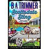 Scottsdale Sting: a fun, romantic, thrilling, adventure... (Laura Black Mysteries Book 5)