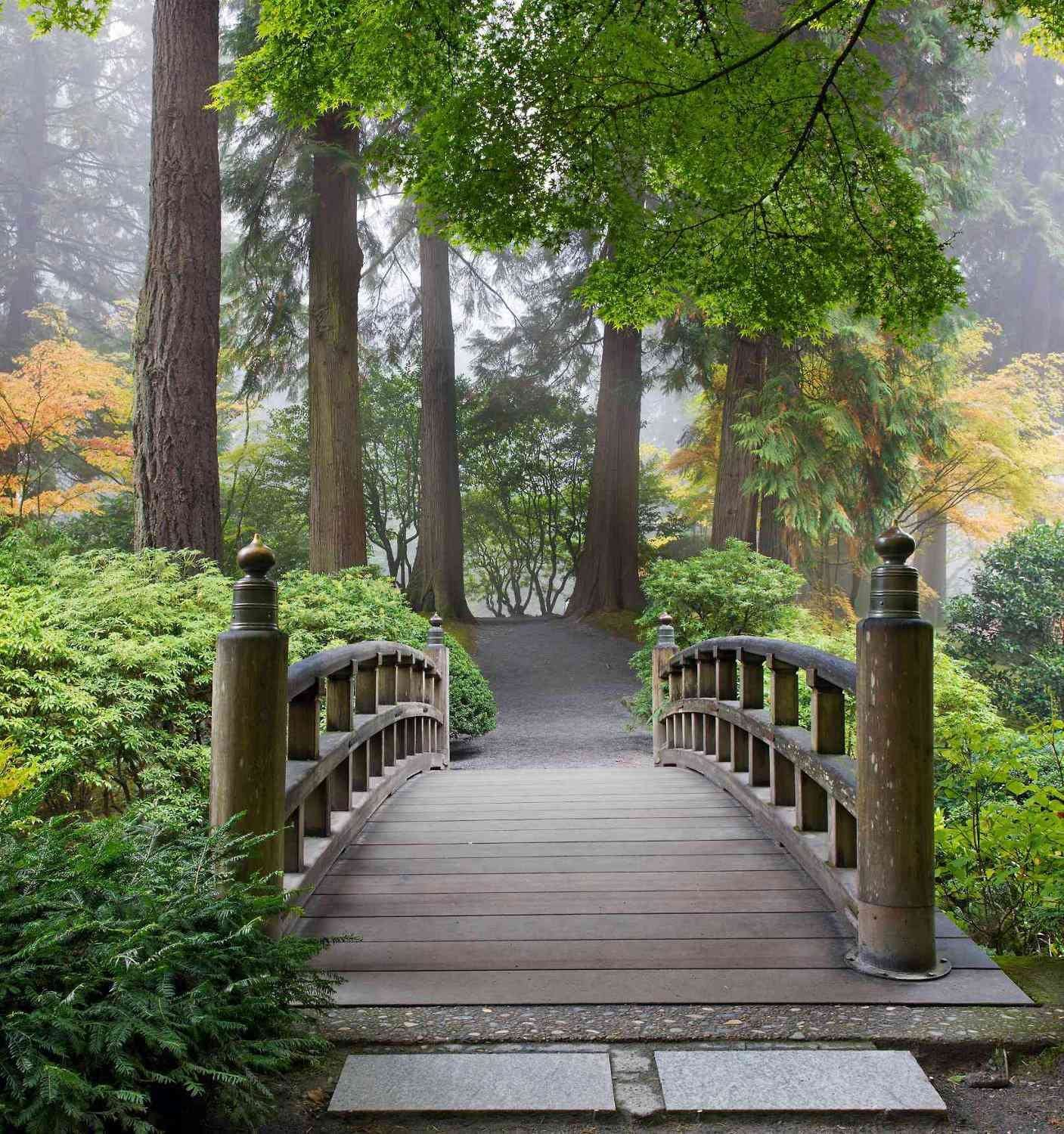 7.5-Feet wide by 8-Feet high. Prepasted wallpaper mural from a photo of: A Wooden Bridge in a Japanese Garden. Our murals are easy to hang remove and reuse (hang again) if you do as in our video.