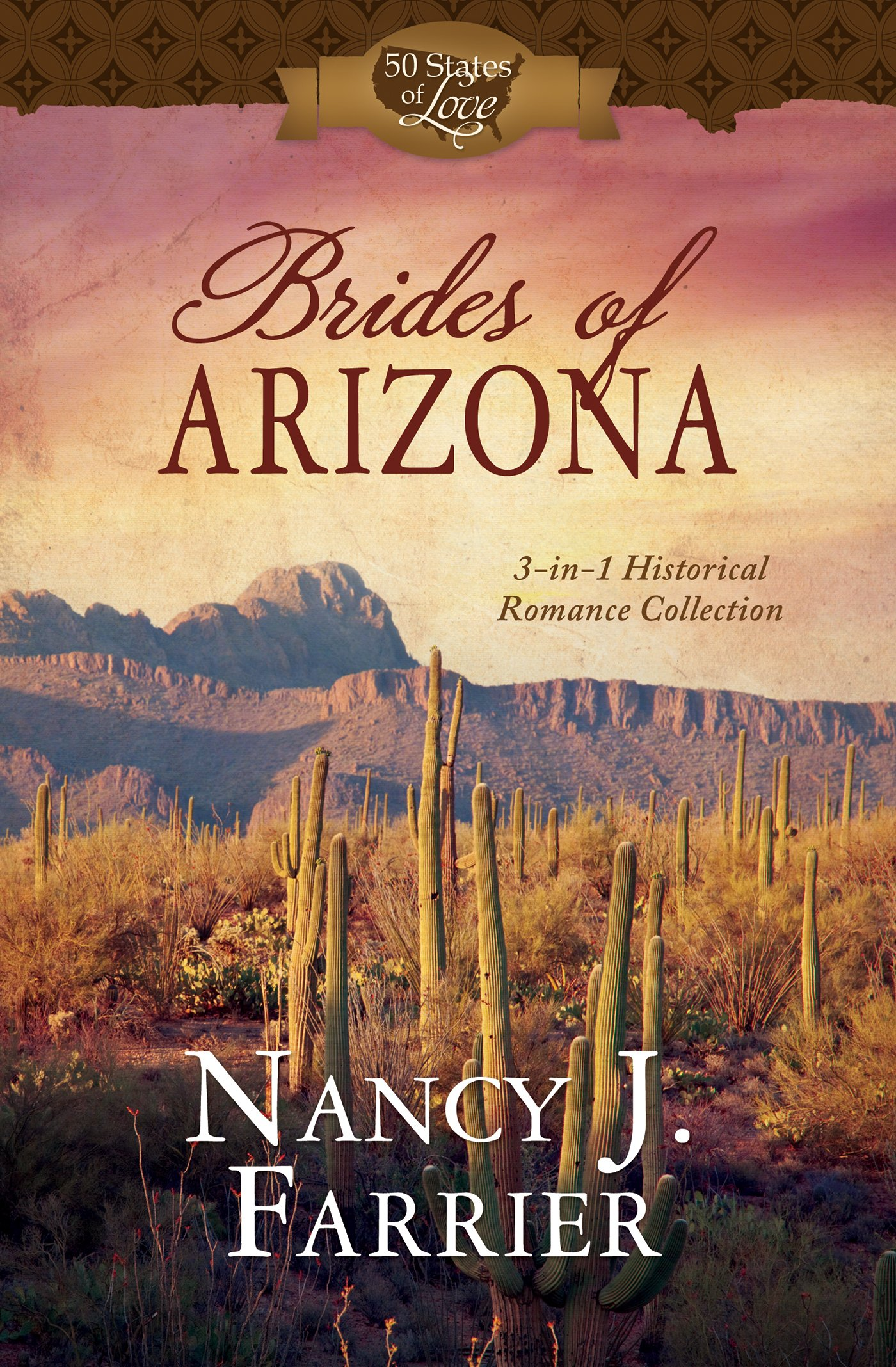 Download Brides of Arizona: 3-in-1 Historical Romance Collection (50 States of Love) pdf