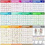[12-PACK] Laminated Large Workout Poster Set - Perfect Workout Posters For Home Gym - Exercise Charts Incl. Dumbbell, Yoga Po