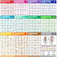 12-Pack Laminated Large Workout Poster Set - Perfect Workout Posters For Home Gym - Exercise Charts Incl. Dumbbell, Yoga Poses, Resistance Band, Stretching, Kettlebell & More Fitness Gym Posters