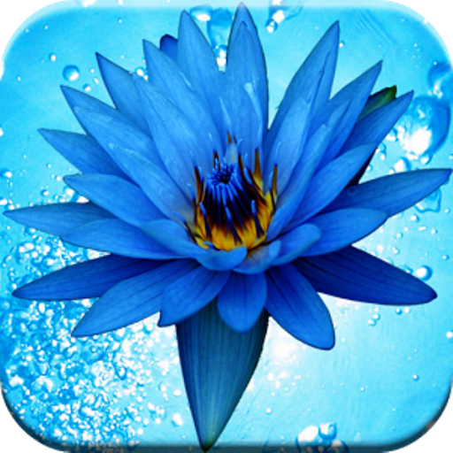 Amazon 3D WATER FLOWERS LIVE WALLPAPER Appstore For Android