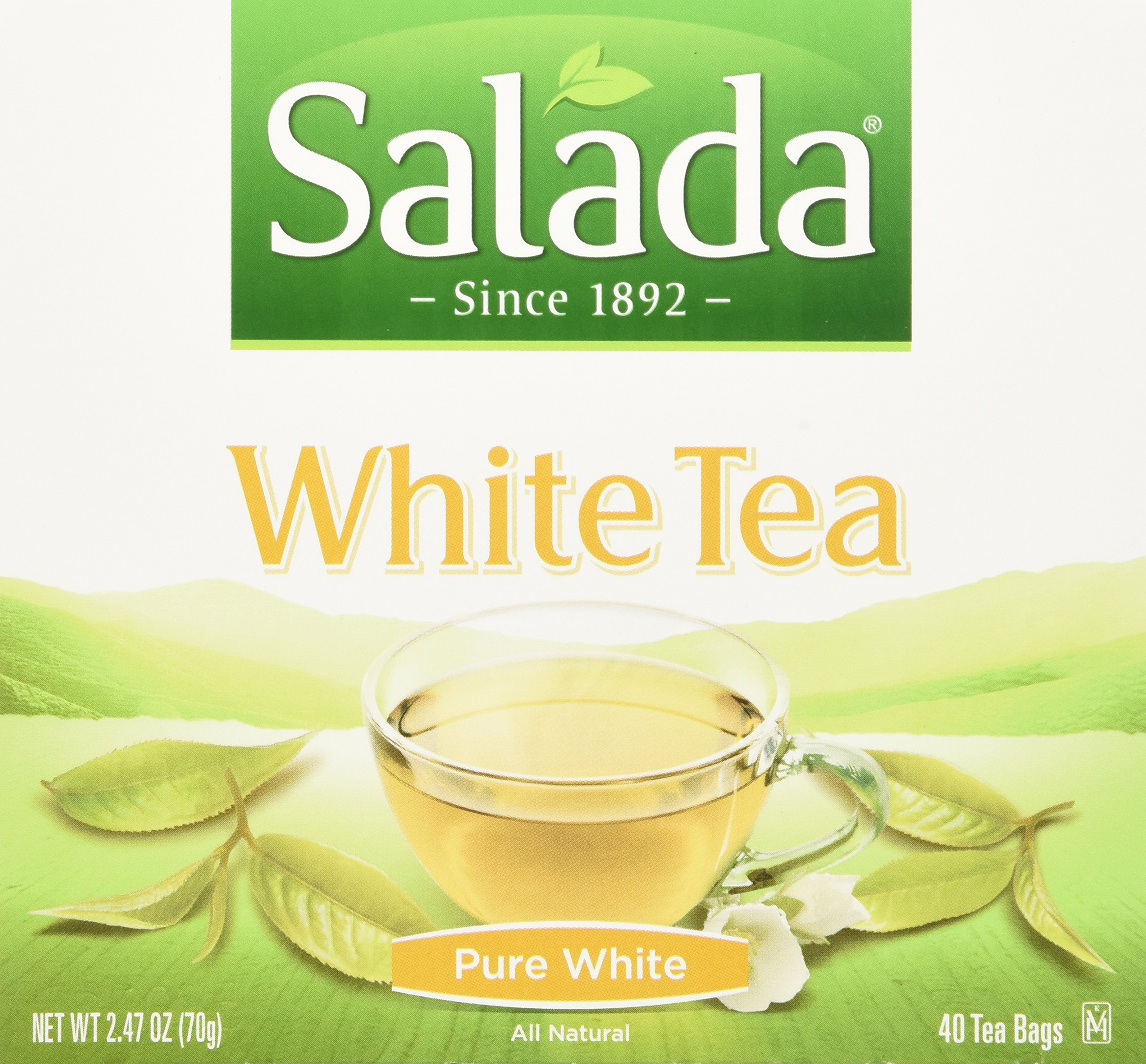 Salada 100% Pure White Tea 40ct (Case of 6 boxes) by Salada