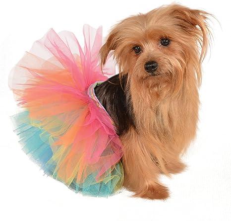 Amazon.com: Rubies Disfraz Halloween Classics Collection ...