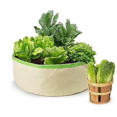 Homegrown Gourmet Herbs and Greens Harvest Grow Bag : Garden & Outdoor