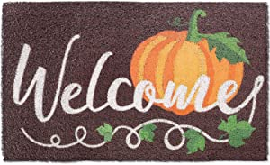 CiyvoLyeen Fall Pumpkin Welcome Doormat Autumn Indoor Outdoor Entrance Home Front Porch Rugs Thanksgiving Housewarming Greetings Gift Decoration Supplies 18 x 30 Inches