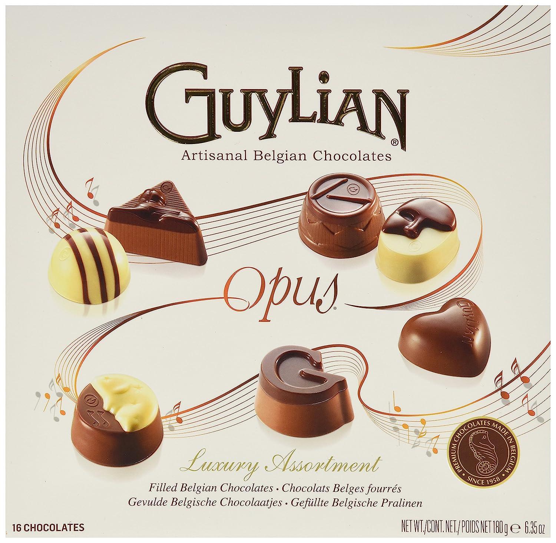 Amazon.com : Guylian Belgium Chocolates 16 Piece Luxury Assortment ...