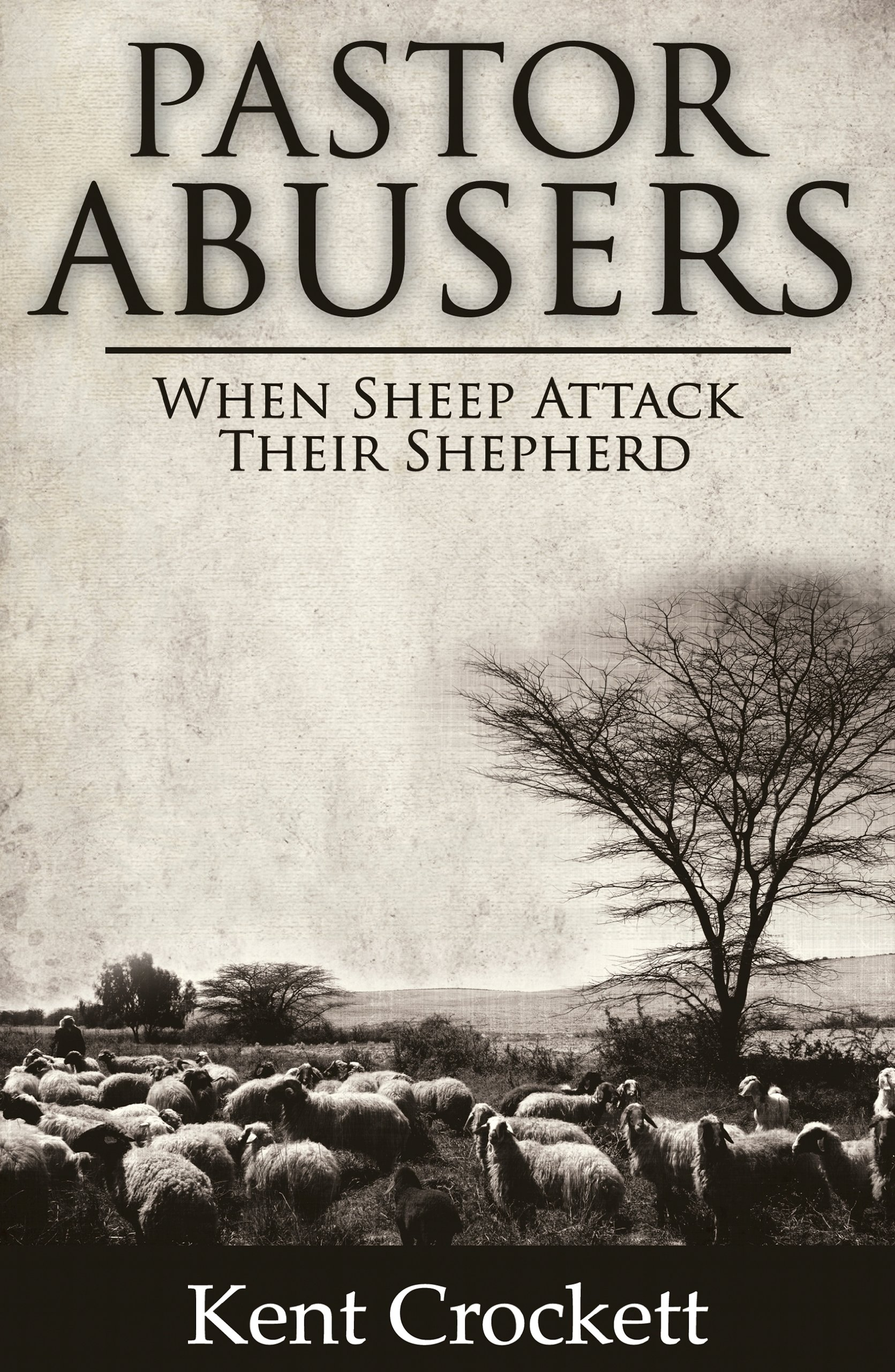Read Online Pastor Abusers: When Sheep Attack Their Shepherd pdf epub