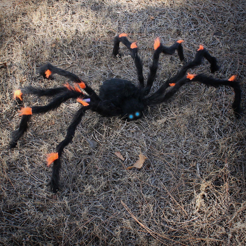 Amazoncom Halloween Haunters Animated 42 Scary Black & Orange Spider