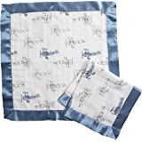 Aden by Aden + Anais Security Blanket 2 Pack, Sky high