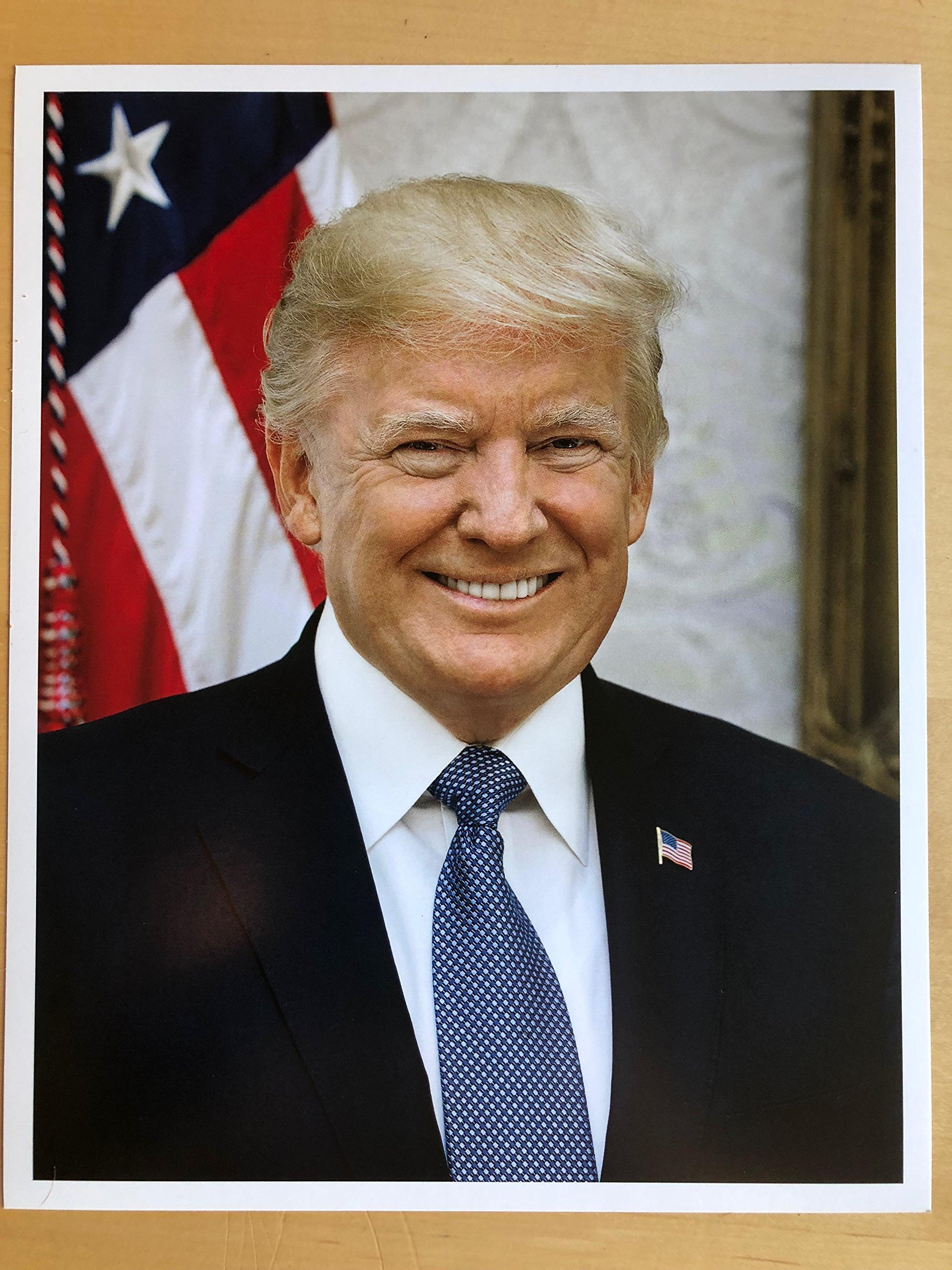 Official Presidential Portrait of Donald Trump