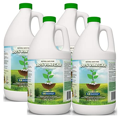 30 Percents Pure Vinegar   Home&Garden (4 Gallon Case) by Eco Clean Solutions