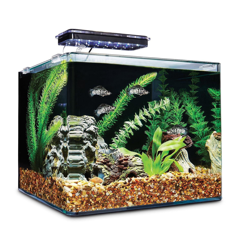 Amazon Imagitarium Frameless Freshwater Aquarium Kit 6 8 GAL