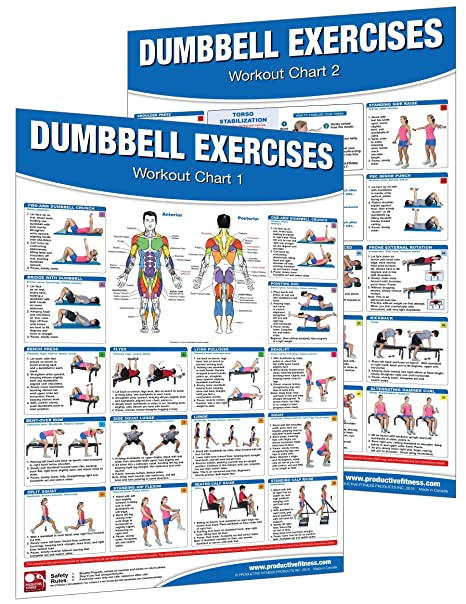 Amazon Com Dumbbell Workout Poster Chart Set Shoulder Training Rh Printable Upper Body Exercises Diagrams Pdf