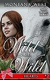 Wild Horses, Wild Hearts 2