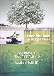 Curso Vida Nova de Teologia Básica. Panorama do Novo Testamento - Volume 3